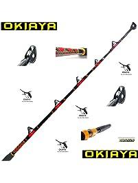 Fishing Rods Amazon Com Fishing Poles