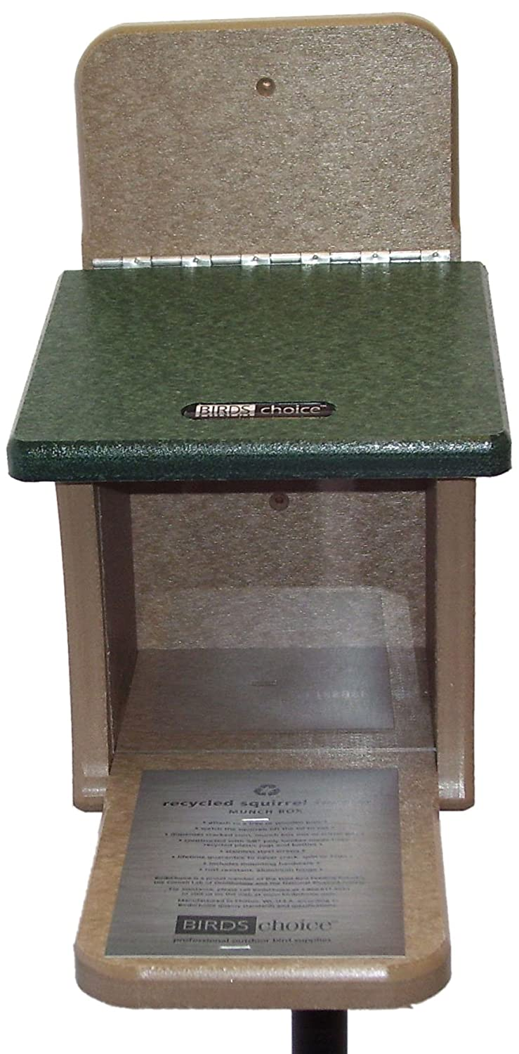 Birds Choice Squirrel Feeder Munch Box Bird's Choice SNSQ