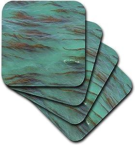 3dRose USA, California, Big Sur. Strands of ocean kelp forest. - Ceramic Tile Coasters, set of 4 , set-of-4-Ceramic, Varies