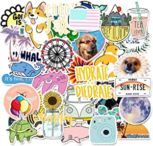 Vsco Cute Stickers for Hydro Flask[50pcs] Ins Vinyl Sticker for Laptop Cups Phone Case Computer PC Water Bottle Bike Helmet Car Motorcycle Tumbler Luggage Helmet Skateboard Snowboard Gift for kids