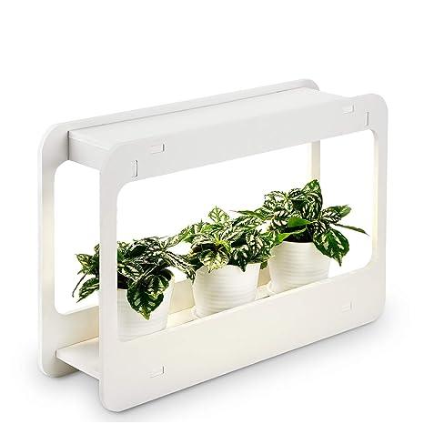 Plant Grow LED Light Kit, Indoor Herb Garden With Timer Function, 24V Low  Voltage