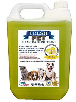 Fresco Mascota de la perrera desinfectante y limpiador de/cattery – Mata 99.99% de