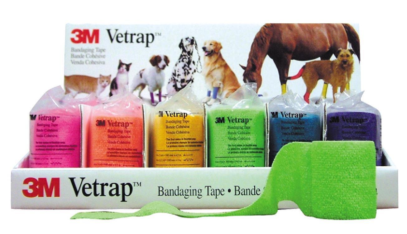 3m Vetrap Bright Colours 10cm. Pack x 6 Bandages.