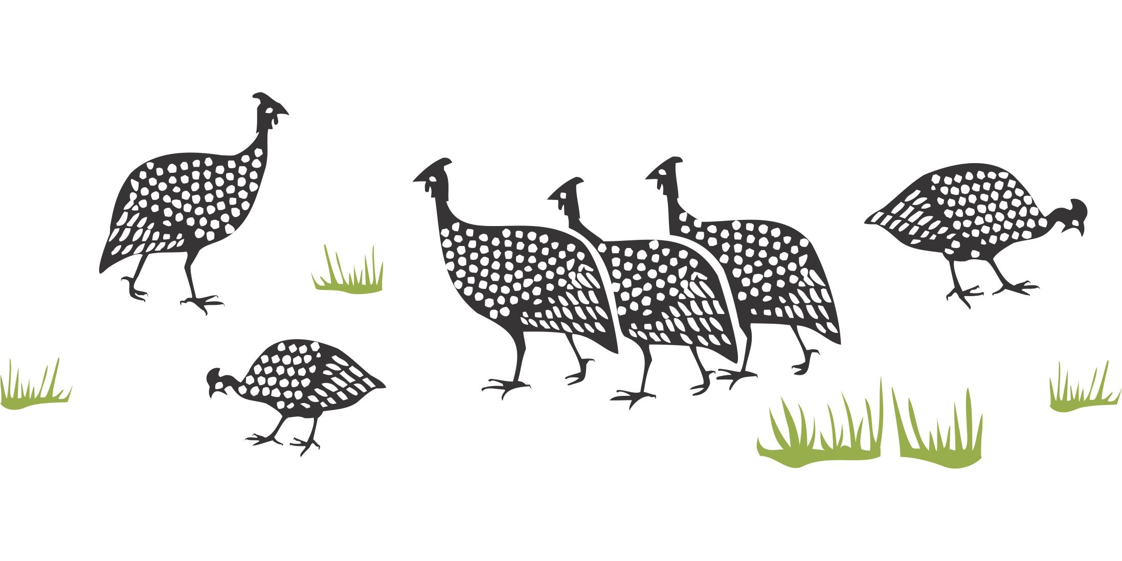 Guinea Fowl Stencil - (size 18''w x 6.5''h) Reusable Wall Stencils for Painting - Best Quality African Wall Border Ideas - Use on Walls, Floors, Fabrics, Glass, Wood, Terracotta, and More... by Stencils for Walls