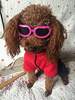 d6ab554efd Enjoying Dog Goggles - Small Dog Sunglasses Waterproof Windproof UV  Protection for Doggy Puppy Cat