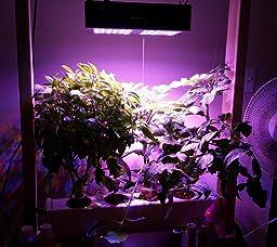 Amazon Com Viparspectra Reflector Series 300w Led Grow