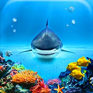 5D Diamond Painting Oceanic Sharks Full of Love Full Drill by Number Kits, SKRYUIE DIY Rhinestone Pasted Paint with Diamond Set Arts Craft Decorations (14x14inch)