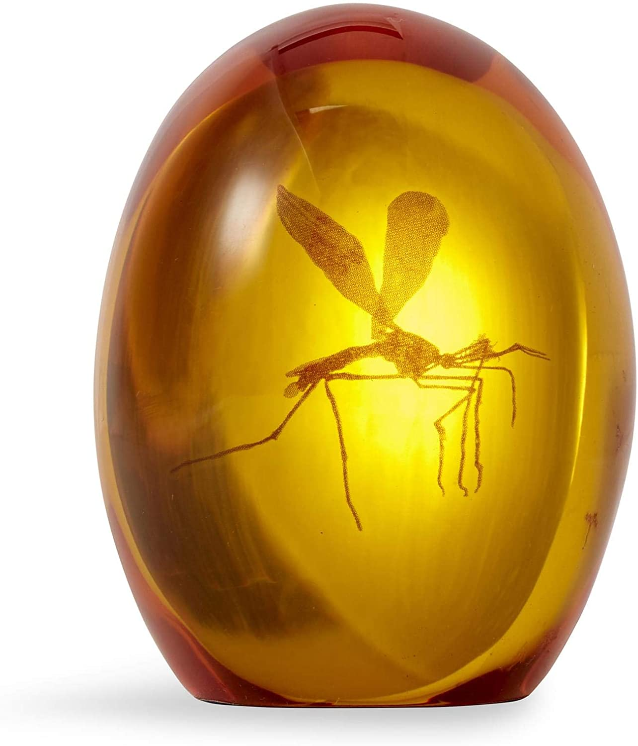 Jurassic Park Mosquito in Amber Resin Prop Replica | Official Jurassic Park Collectible Paper Weight | Measures 3 Inches Tall