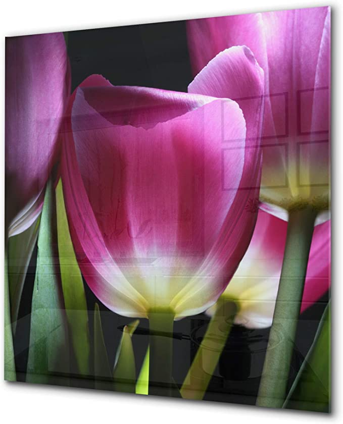 Toughened glass backsplash Art glass design printed glass splashback BS 04 Dandelion and flowers series Meadow Of Tulips