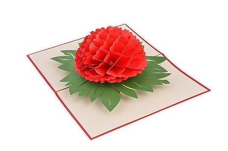 Amazon.com: Hecha a mano, bonita tarjeta 3D PopUp paquete de ...
