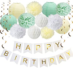 Mint Green Birthday Decorations, Party Decorations Supplies, Happy Birthday Banner, Paper Flowers, Hanging Swirls for Baby Shower, Birthday Party Supplies