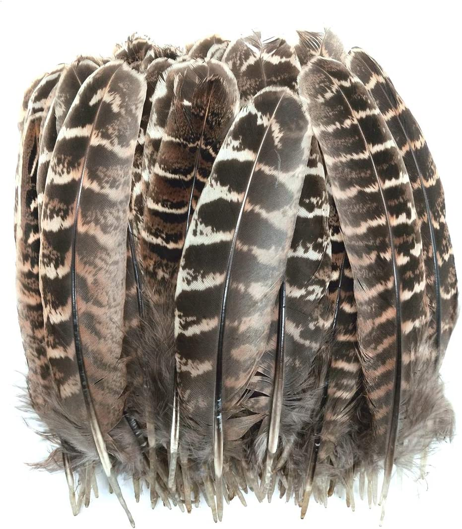 100pcs 5-7 inches Natural Pheasant Feathers Wing Quill for Crafts Hats Party Decorations Accessories (Natural)