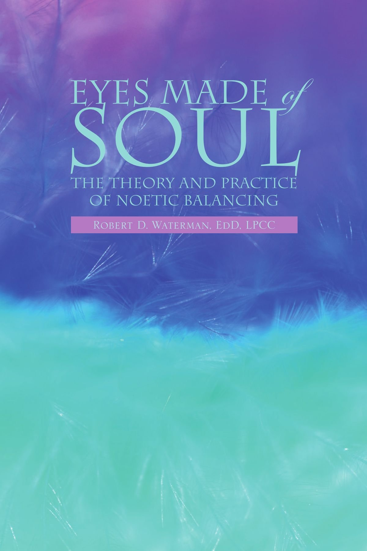 Read Online Eyes Made of Soul: The Theory and Practice of Noetic Balancing PDF