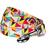 Blueberry Pet Durable Adorable Triangles in Colorful Spring Pastels Dog Lead 150 cm x 2cm, Medium, Leads for Dogs, Matching Collar Available Separately