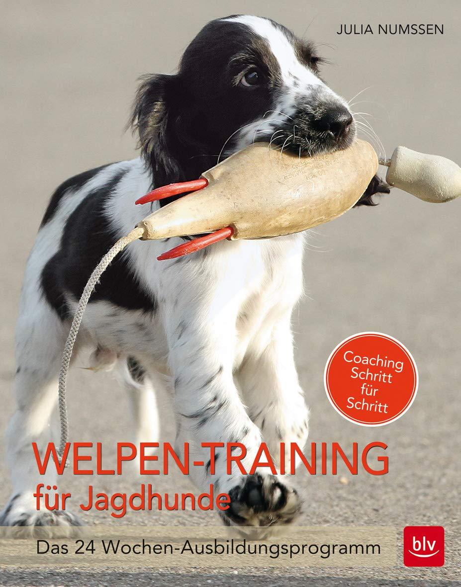 Welpen Training Für Jagdhunde  Das 24 Wochen Ausbildungsprogramm