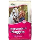 Manna Pro Peppermint Trail Size Bite Size Nuggets, 1 lb …