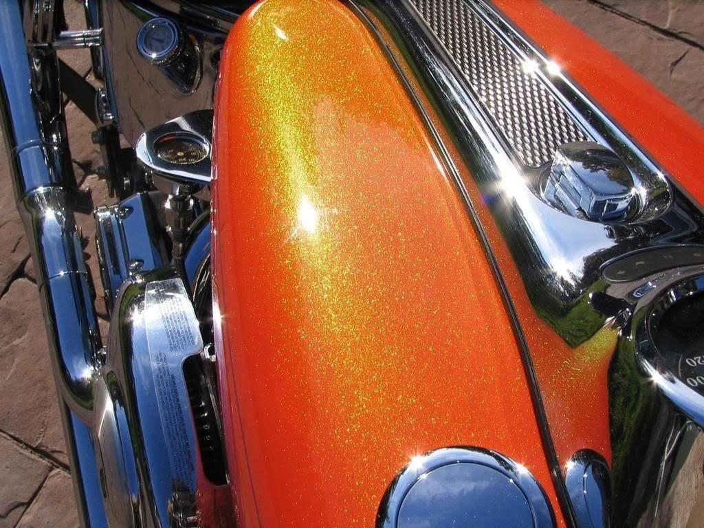 Amazon 12oz aerosol kit harley davidson paint tequila amazon 12oz aerosol kit harley davidson paint tequila sunrise automotive nvjuhfo Images