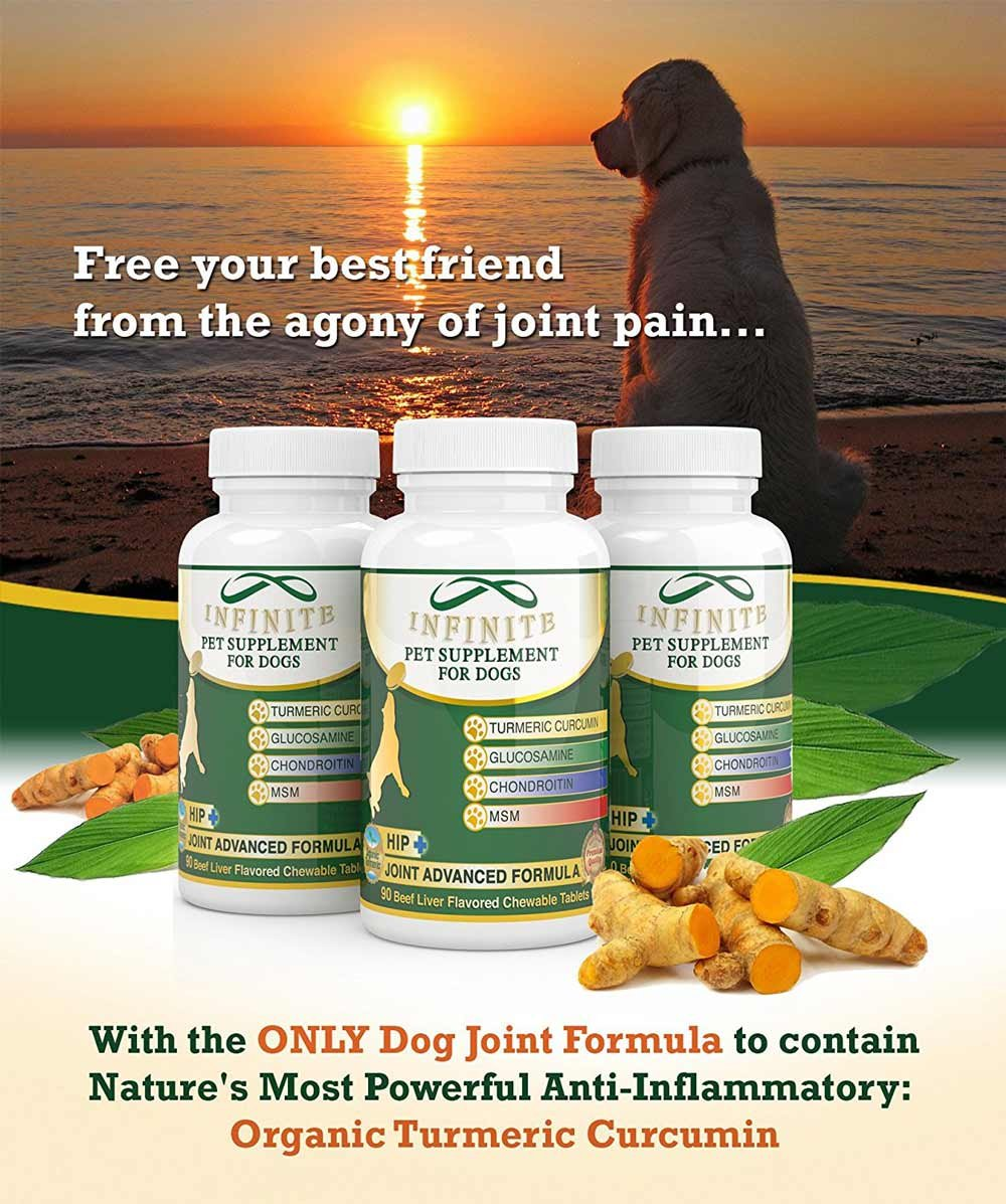 amazon com all natural hip joint supplement for dogs with
