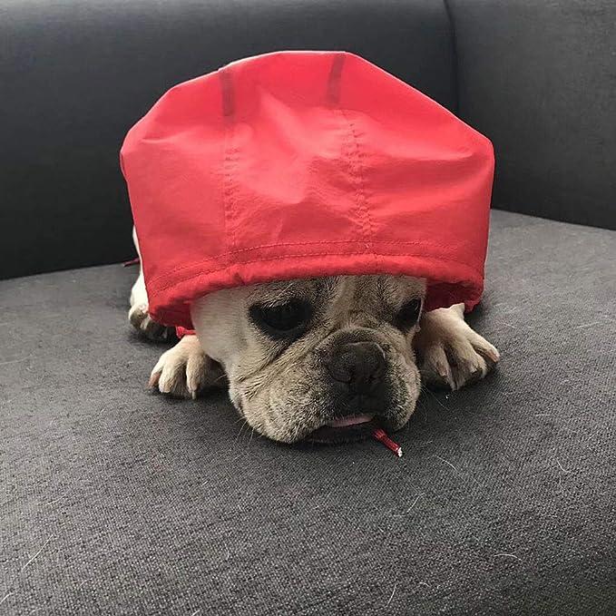 QPZYB Abbigliamento Cane per Cani di Piccola Taglia