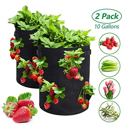 BUTLING 2 Pack Strawberry Grow Bags, 10 Gallon Strawberry Growing Bag with 8 Side Grow Pockets, Breathable Non-Woven Fabric Reinforce Handle Strawberry Planter for Garden Strawberries, Flowers : Garden & Outdoor