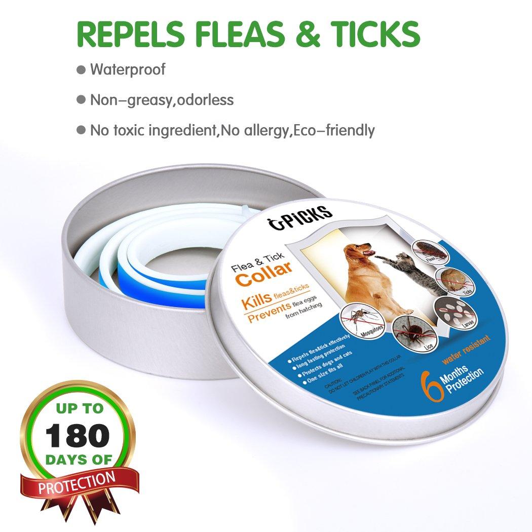 Collar de pulgas para perros, 6 meses de protección contra pulgas y control de garrapatas para perros Gatos, tamaño ajustable e impermeable, Stop Bichos y ...