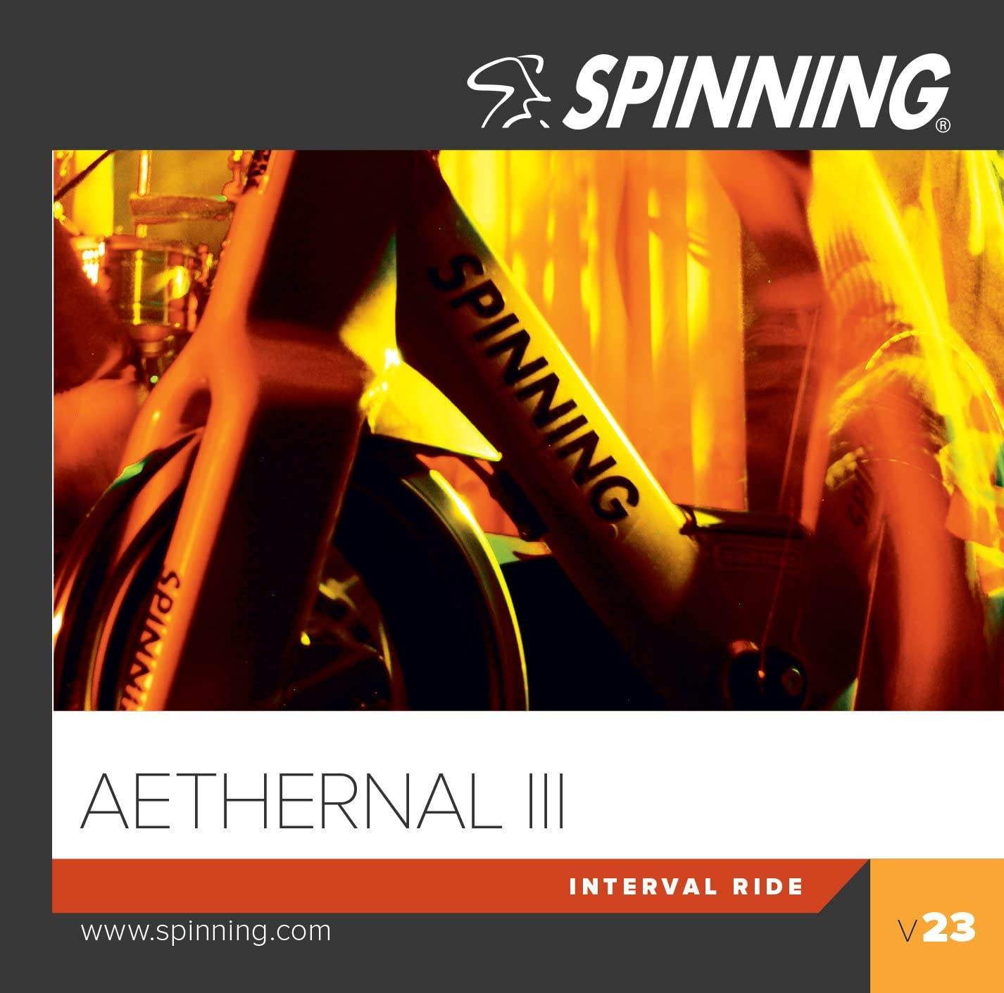 SPINNING 23 Aethernal III - Bicicletas estáticas Fitness, Color ...