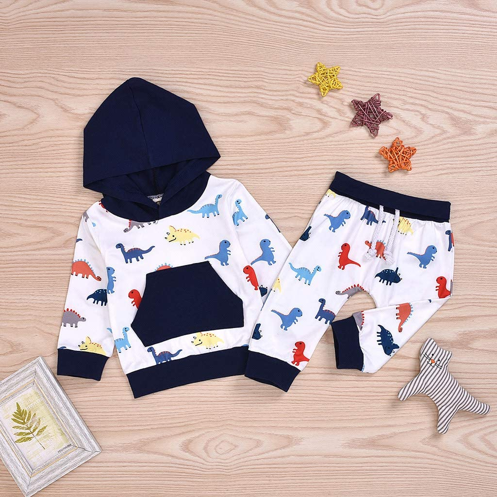 Toddler Baby Boys Girls 6 Months-4T Clothes Long Sleeve Hoodie Swallow Animal Print Tops Outfits