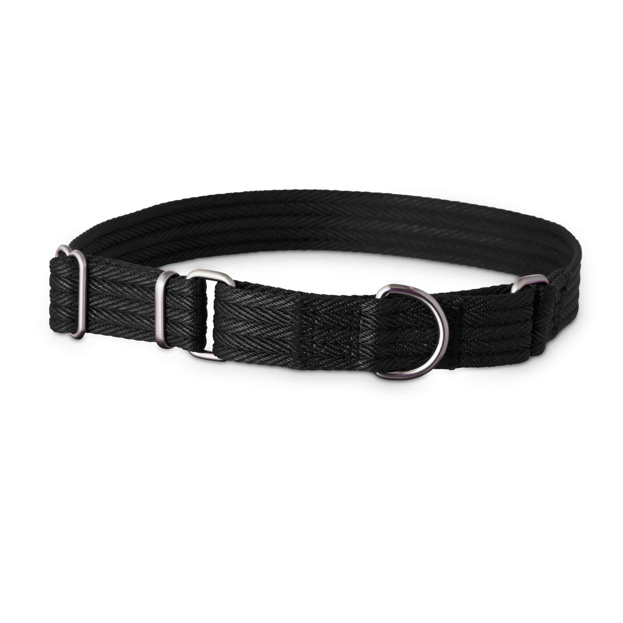 Good2Go Black Martingale Dog Collar, Medium