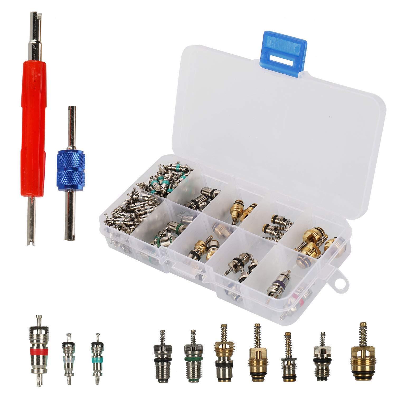 102Pcs A/C R12 R134a Refrigeration Tire Valve Stem Cores Remover Tool Assortment Kit Sywan