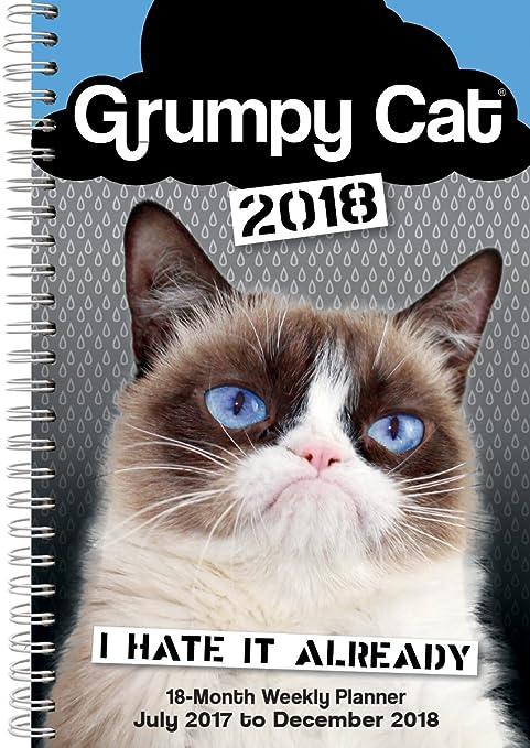 Christmas In July Cat Meme.Grumpy Cat 2018 Engagement Calendar Cw0232 Grumpy Cat