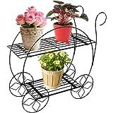 PAG Home Decor 2 Tier Metal Garden Carts Plant Stands Flower Pot Holder,Black