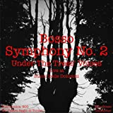 "Symphony No. 2, Under The Trees' Voices (Live at ""Suoni delle Dolomiti"")"