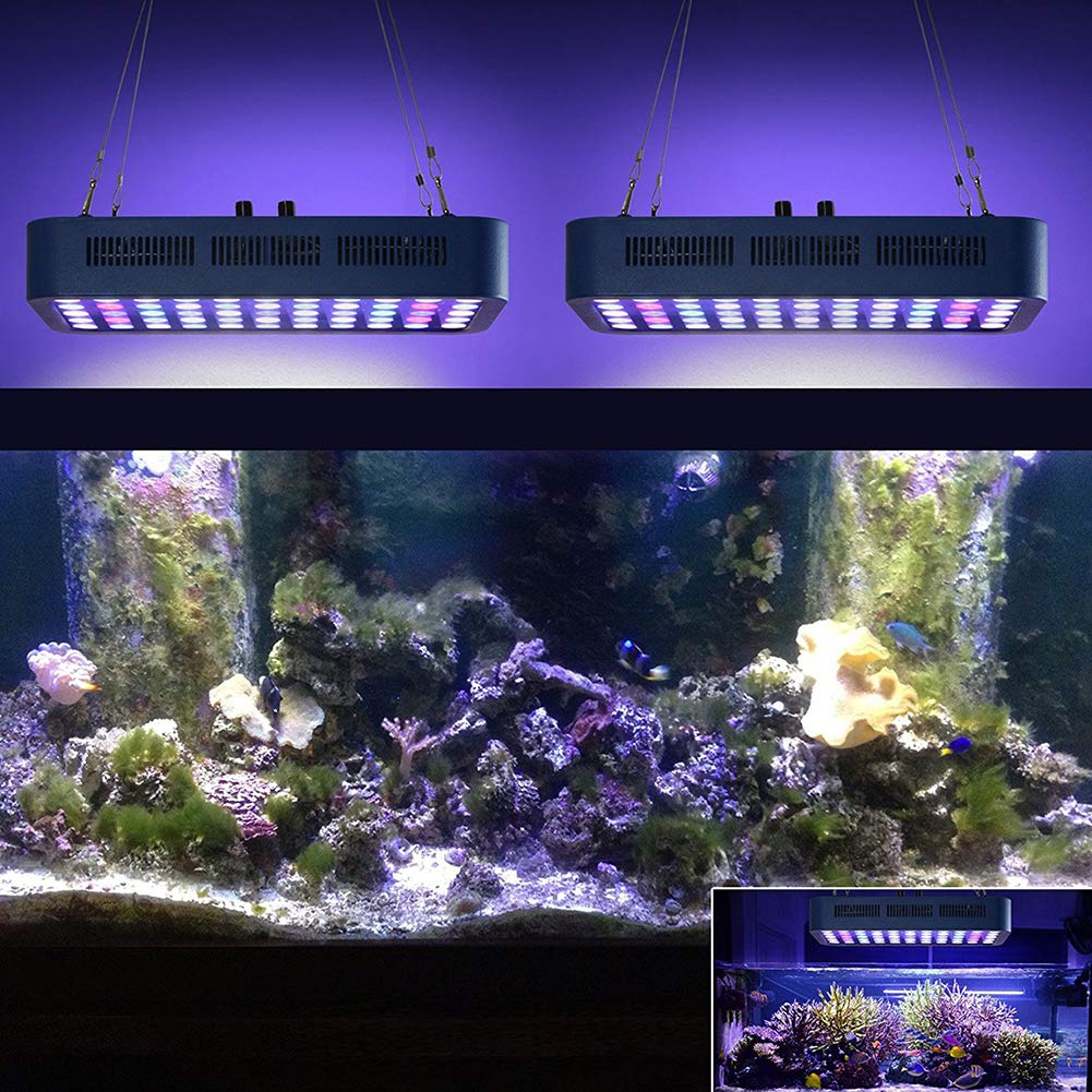 TOOFD Aquarium Light 165Wled Dimmable Coral Aquarium Lighting Full Spectrum Plant Light 55 * 3W: Amazon.es: Deportes y aire libre