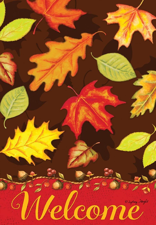 Briarwood Lane Fall Leaves Welcome House Flag Autumn 28