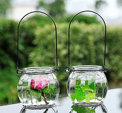 LJIE Florero De Vidrio Creativo Planta Hidropónica Botella De Calabaza Botella De Vidrio Transparente Flor De