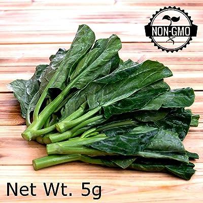Gaea's Blessing Seeds - Organic Gailan 500+ Seeds Non-GMO Chinese Broccoli Chinese Kale Brassica Oleracea Kailaan Kai LAN 93% Germination Rate Net Wt. 2.5g : Garden & Outdoor
