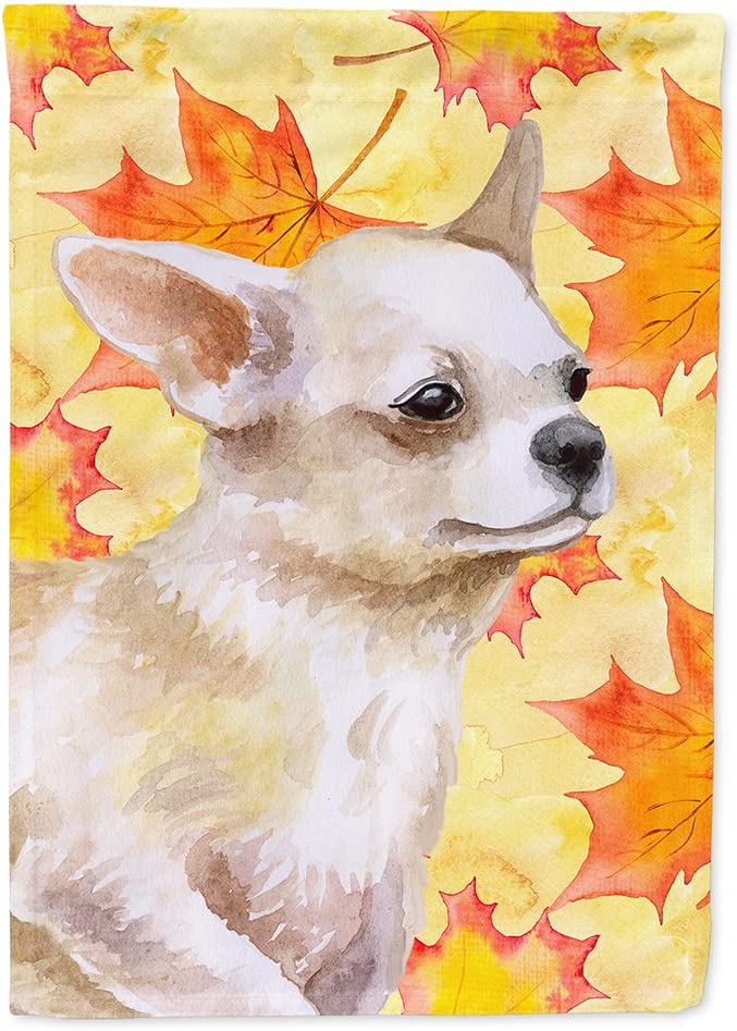 Caroline's Treasures BB9958GF Chihuahua Leg up Fall Flag Garden Size, Small, Multicolor