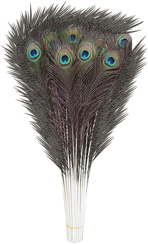 Weddecor - Plumas naturales de cola de pavo real, plumas coloridas ...