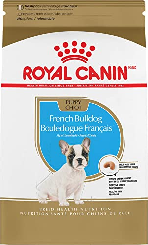 Royal-Canin-French-Bulldog-Puppy-Breed-Specific-Dry-Dog-Food