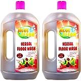 Sarv Herbal Floor Wash 1000 Ml - Pack Of 2