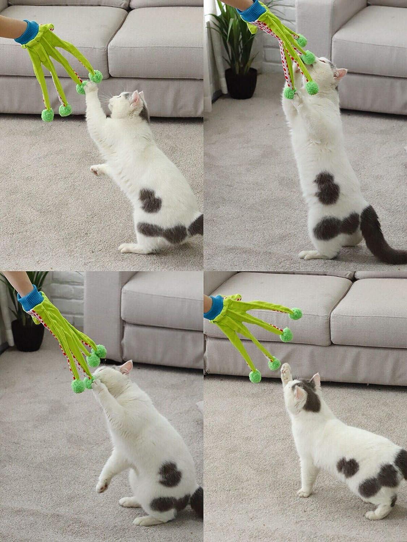 d25923edbce Amazon.com   PAWZ Road Pet Toy Cat Teaser Kitten Scratcher Cat Glove  Interactive Toy 5 Fingers Green-White   Pet Supplies