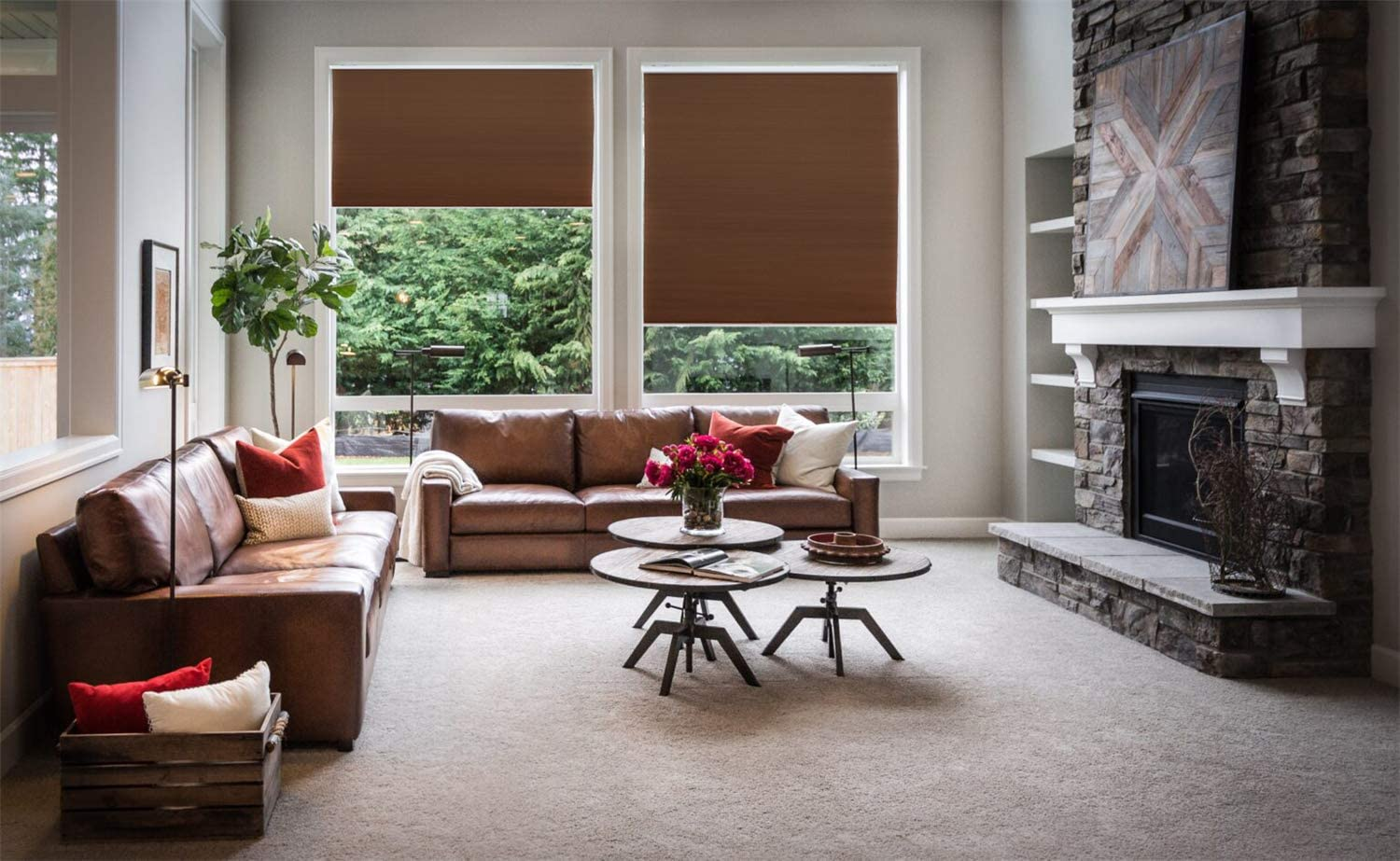 """HTTMT- Coffee Honeycomb Cordless Cellular Shades Privacy & Light Filtering Cordless Blackout Cellular Shades Home Decorative Window Blinds - 56"""" W X 48"""" H"""