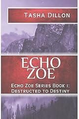 Echo Zoe: Book 1: Destructed to Destiny (Volume 1) Paperback