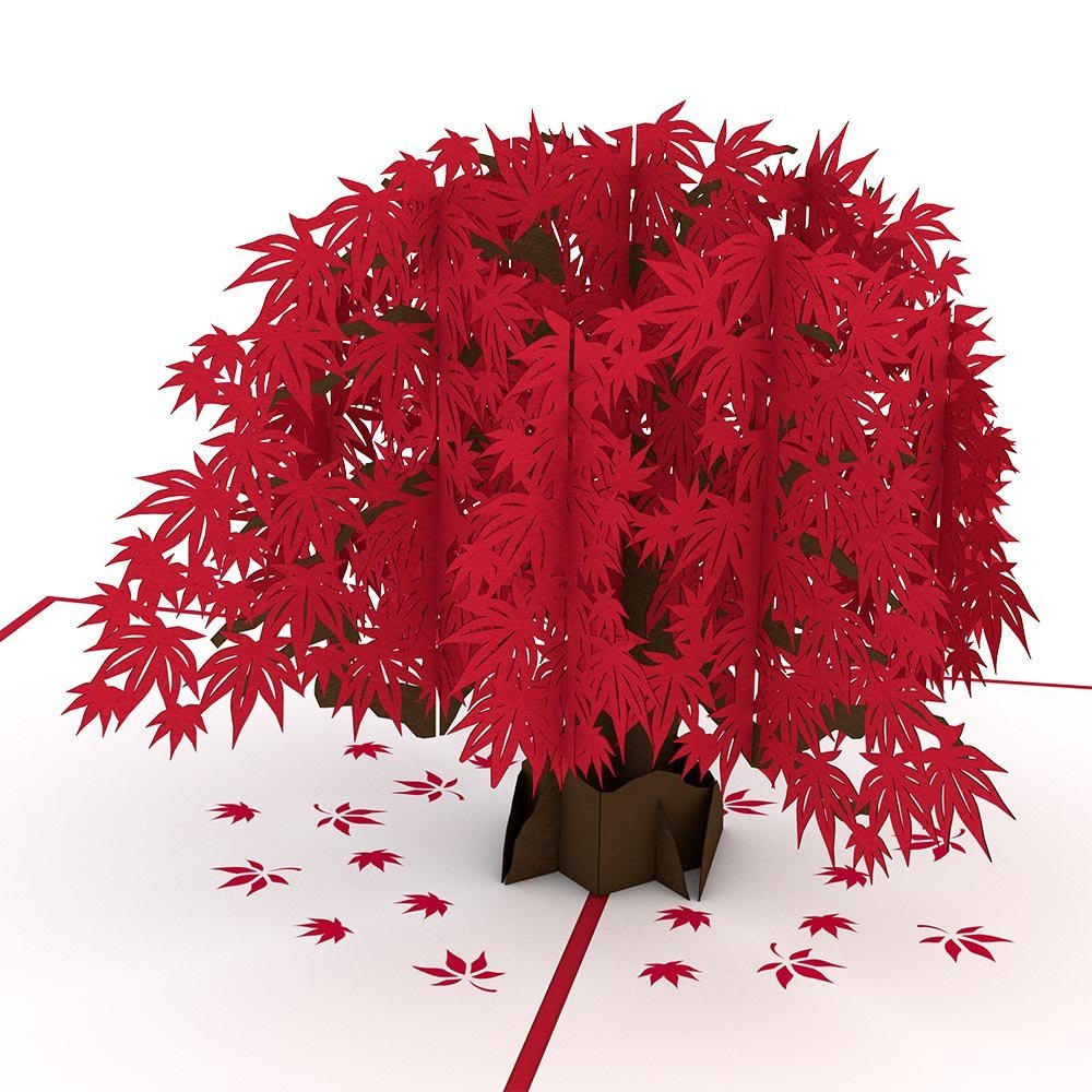 Lovepop Japanese Maple Pop Up Card, 3D Card, Tree Card, Nature Card, Foliage Card, Fall Card