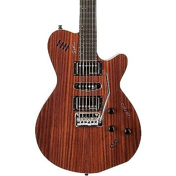 Godin edición especial palisandro xtsa guitarra eléctrica Natural: Amazon.es: Instrumentos musicales