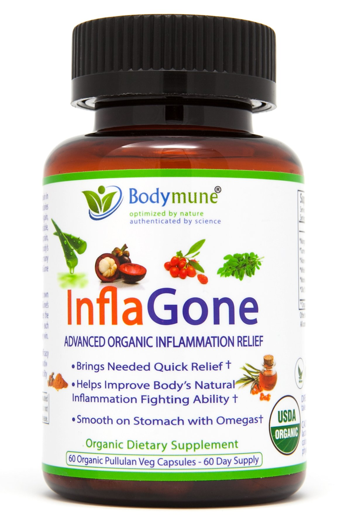 Anti-Inflammatory Pain Relief Back Pain Carpal Tunnel Sciatica Pain Relief Muscle Pain Head Ache Effective Nutritional Support Synergistic Blend by Bodymune | Organic All Natural Gluten Free 60 Caps