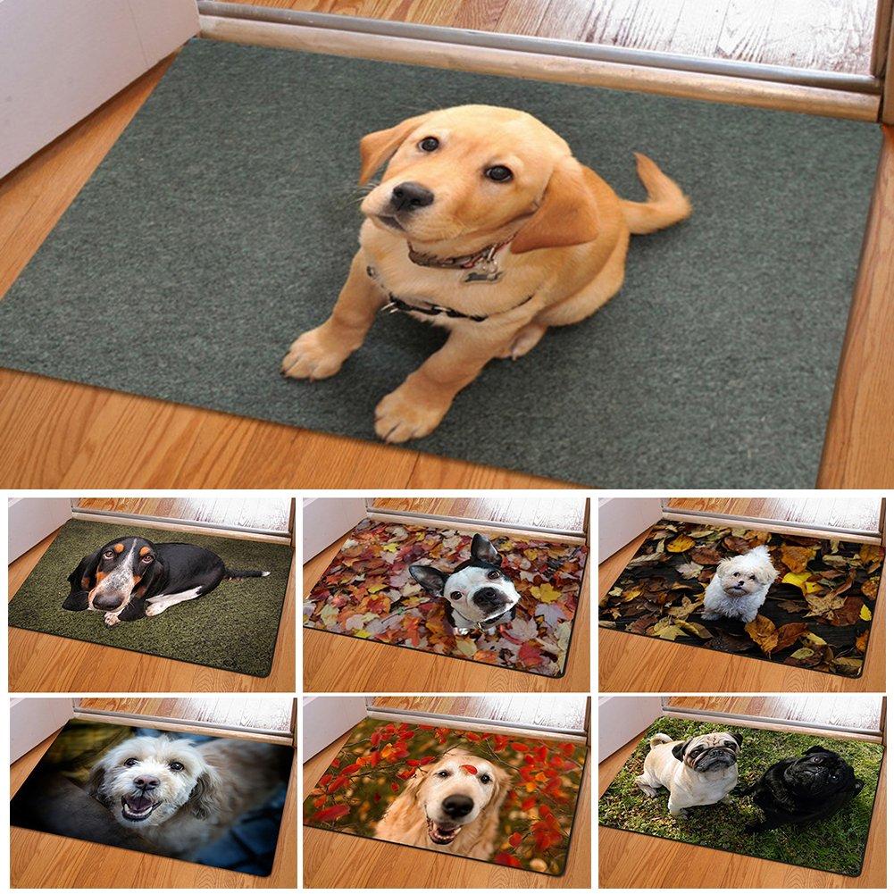 2 Flanelle Taille Unique Pengyu Cute Animal Domestique Chien Imprim/é rectangulaire Chambre /à Coucher de Cuisine antid/érapant Paillasson Moderne Home Decor