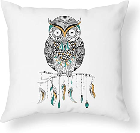 Amazon Com Cb Smiles Owl Throw Pillow White Pillows Owl Pillow Owl Pillows Gifts Feather Pillows For Couch Feathers Pillow Boho Chic Pillows Cute Pillows 14 X14 Cover Only Home Kitchen
