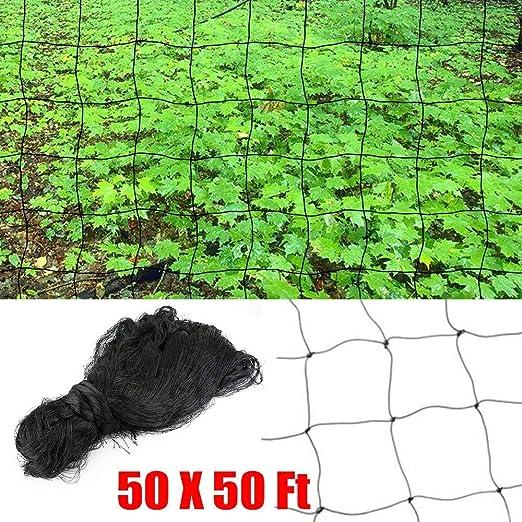 dgcus pájaros árbol de Fruit protective Net plagas Bloquear aves ...