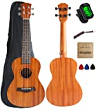 Vizcaya UK23C-MA Concert Ukulele Mahogany 23 inch